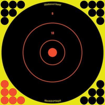 SHOOT•N•C® 12 INCH BULL'S-EYE, 5 TARGETS - 120 PASTERS