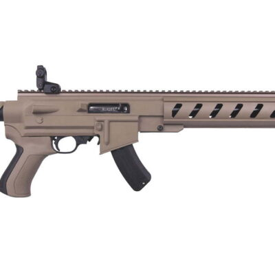 Ruger 10/22 AR-22 22LR Rimfire Rifle with ATI Flat Dark Earth Collapsible Stock