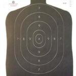 B27 Target